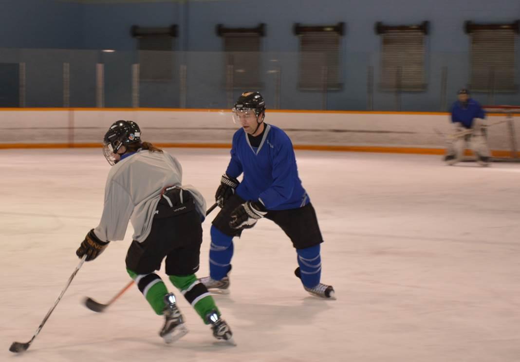 Edmonton Hockey
