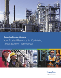 Swagelok Energy Advisors Brochure