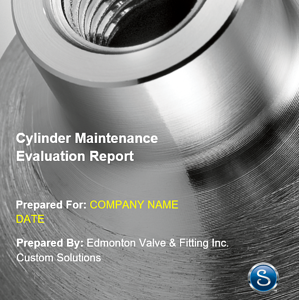 Example Cylinder Maintenance Evaluation Report