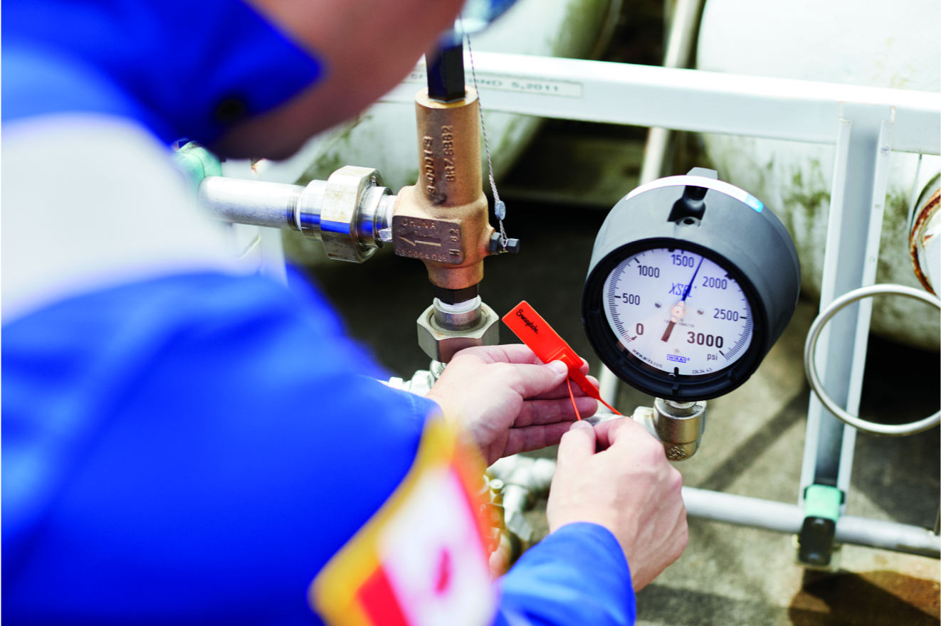 Gas Distribution System Eval